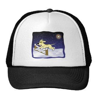 Cartoon Agility Dog Christmas Mesh Hats