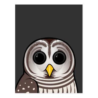 Cartoon Barred Owl Postcard