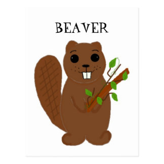 Cartoon Beaver Postcard