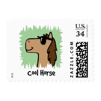 Cartoon Clip Art Cool Horse Wearing Sunglasses Postage