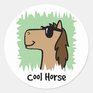 Cartoon Clip Art Cool Horse Wearing Sunglasses Classic Round Sticker