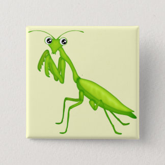 Cartoon Green Praying Mantis Flair Pinback Button
