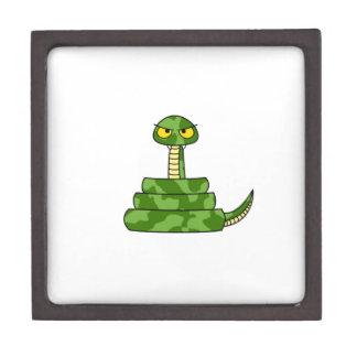 Cartoon Green Snake in Coil Gift Box