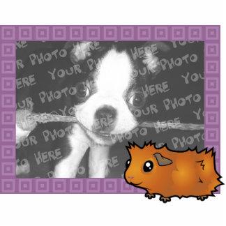 Cartoon Guinea Pig Photo Frame (scruffy) Photo Cutouts