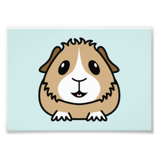 Cartoon Guinea Pig Print (Frames Available!) Photo Print