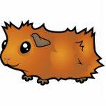 Cartoon Guinea Pig (scruffy) Photo Sculpture Magnet