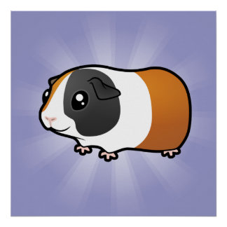 Cartoon Guinea Pig (smooth hair) Poster