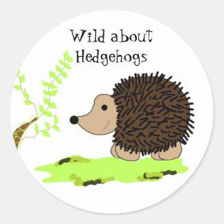 Cartoon Hedgehog Classic Round Sticker