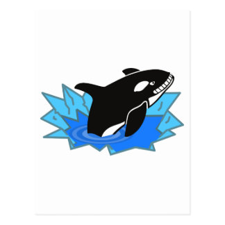 Cartoon Killer Whale/Orca Leaping Out of the Water Postcard