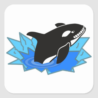 Cartoon Killer Whale/Orca Leaping Out of the Water Square Stickers
