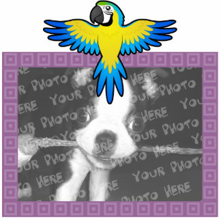 Cartoon Macaw / Parrot Statuette
