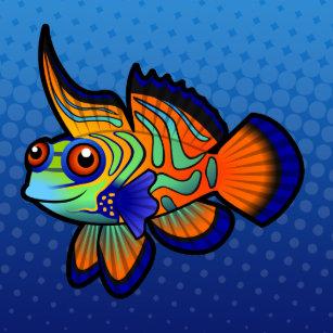 Mandarin Dragonet Fish   Mandarin Dragonet Home Decor Pets Products Zazzle