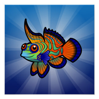 Cartoon Mandarin / Dragonet Fish Poster