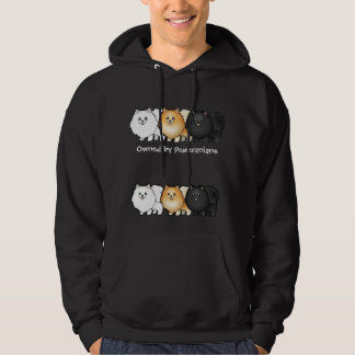 Cartoon Pomeranians Sweatshirts