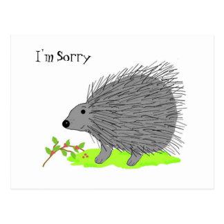 Cartoon Porcupine - I'm Sorry Postcard