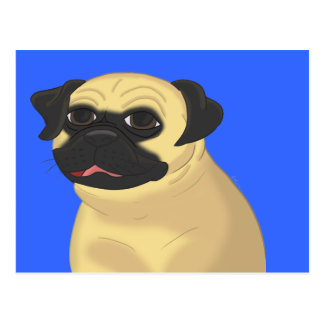 Cartoon Pug Face Postcard
