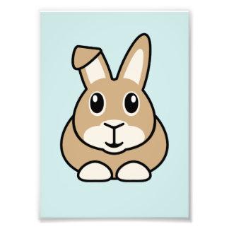 Cartoon Rabbit Print (Frames Available!) Photo Print