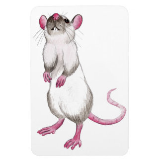 cartoon rat magnet