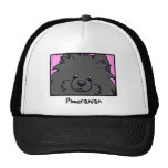 Cartoon Square Black Pomeranian Hat