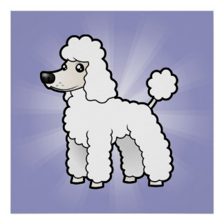 Cartoon Standard/Miniature/Toy Poodle Poster
