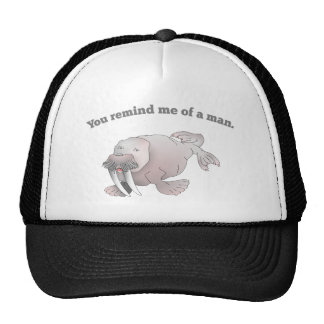 Cartoon walrus, you remind me of a man trucker hat