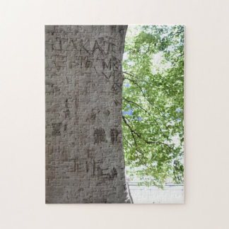 Carved in a Tree Central Park Nature Photography Jigsaw Puzzle