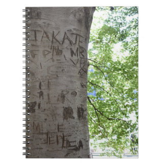 Carved in a Tree Central Park Nature Photography Notebook