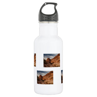 Carved in Stone Stainless Steel Water Bottle