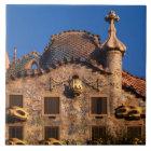 Casa Batilo, Gaudi Architecture, Barcelona, Ceramic Tile