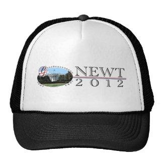 Casa Blanca 2012 del Newt Gorros Bordados