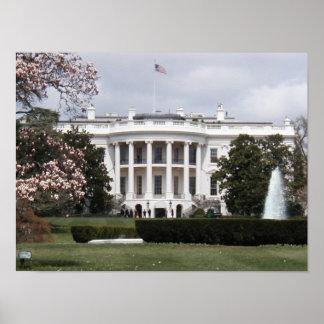 Casa Blanca Póster