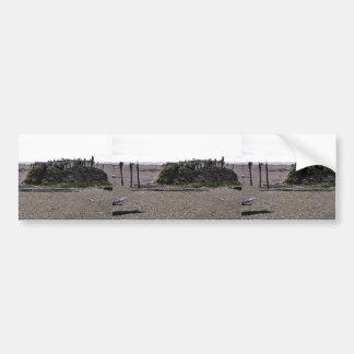 Casa de césped vieja con el marco del Driftwood en Etiqueta De Parachoque