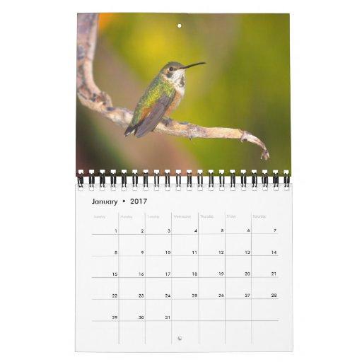 Casa de fieras calendario