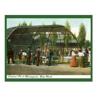 Casa de fieras del Central Park, vintage 1909 de N Postal
