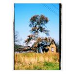 Casa de la escuela vieja tarjetas postales