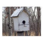casa de madera resistida del pájaro por Kim Postal