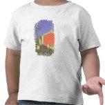 Casa de reunión del Solones, Ak-Kent, 1869-70 Camiseta