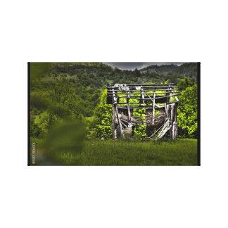 Casa del arbolado lona estirada galerias