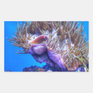 Casa del coral de los pescados pegatina rectangular