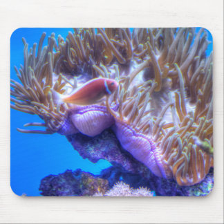 Casa del coral de los pescados alfombrillas de raton