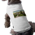 Casa del diamante - casa del puerto MI de David -  Camisetas Mascota