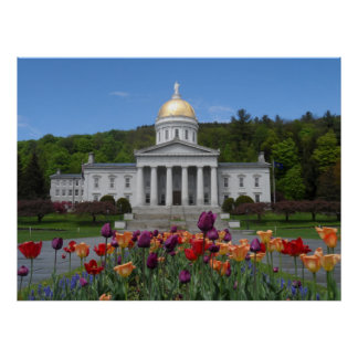 Casa del estado de Vermont - Montpelier Póster