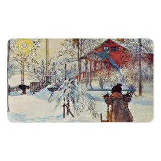 Casa del lavado en la nieve tarjetas de visita