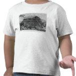 Casa en el pueblo de Arfak de Memiwa, Nueva Guinea Camiseta