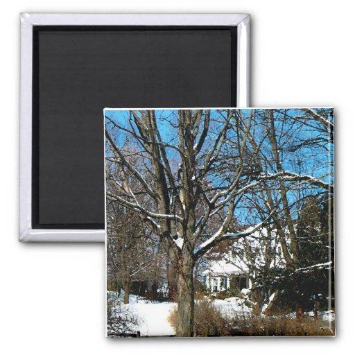Casa en la colina en invierno imán cuadrado
