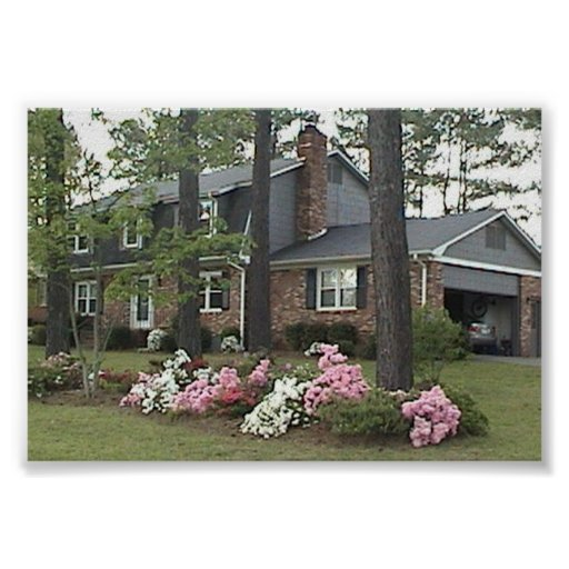 casa en primavera poster