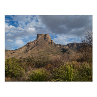 Casa Grande Peak, Chisos Basin, Big Bend Postcard