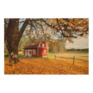 Casa sueca roja entre las hojas de otoño cuadro de madera