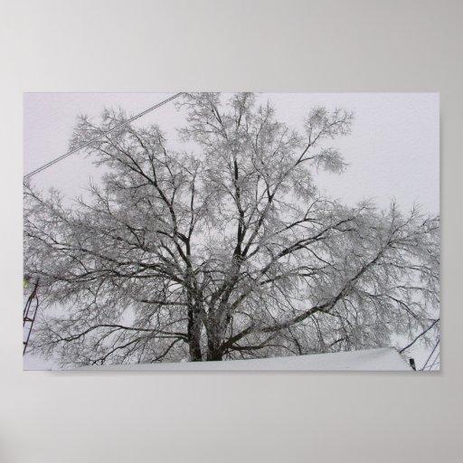 Casa y árbol cubiertos con nieve, impresiones