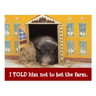 Casa y cerdo movimos nuevas tarjetas de la postales